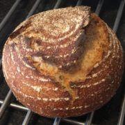 Zuurdesembrood als metafoor voor gewonemensentaal